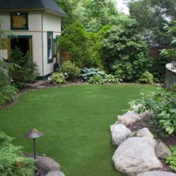 Artificial grass in backyard lawn surrounded by foliage
