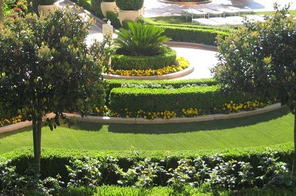 Circular commercial grass and bushes design with trees