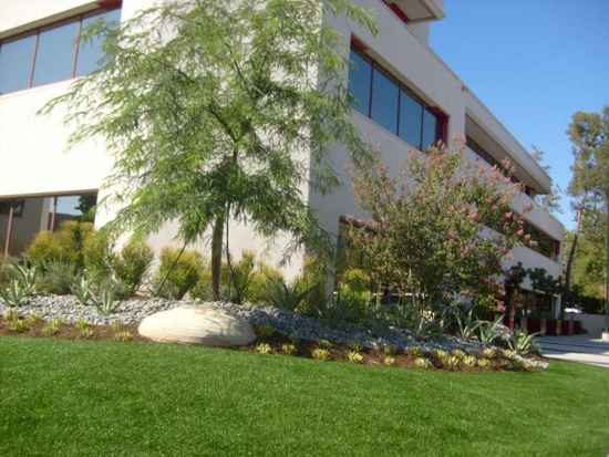 Commercial grass landscaping outside Calabasis in Pennsylvania
