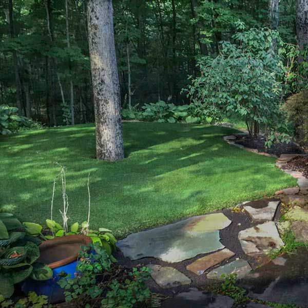 Artificial turf backyard leading into a New Jersey forest