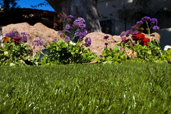 Artificial lawn lined by purple and red flowers in Bucks County